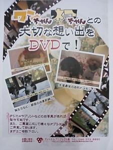 ペットの想い出DVD制作してます!